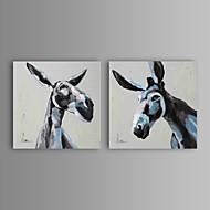 מצויר ביד בעלי חיים שני פנלים בד ציור שמן צבוע-Hang For קישוט הבית