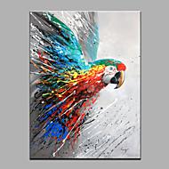 Kézzel festett Állat Függőleges,Modern Egy elem Hang festett olajfestmény For lakberendezési