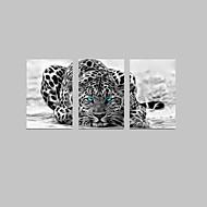 Canvas Set Abstrakti Eläin Moderni Perinteinen,3 paneeli Pystysuora Tulosta Art Wall Decor For Kodinsisustus