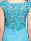 Ίσια Γραμμή Bateau Neck Μακρύ Σιφόν Δαντέλα Επίσημο Βραδινό Φόρεμα με Διακοσμητικά Επιράμματα Δαντέλα Χιαστί με TS Couture®