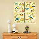 ieftine Produse Antistres-Intins Canvas Art Păsări animalelor și constituirea Butterfly din 4