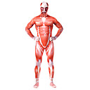 cheap Zentai Suits-Inspired by Attack on Titan Bertolt Huber Anime Cosplay Costumes Cosplay Suits Print Patchwork Leotard / Onesie For Men's Women's