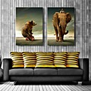 halpa Tulosteet-Canvastaulu art karhu ja elefantti koristelu sarja 2