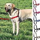 baratos Adestramento para Cães-Cachorro Arreios / Trelas / Coleira Com Deslize Retratável Aço Inoxidável / Plástico / Náilon Rosa / Vermelho / Azul