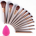 cheap Makeup Brush Sets-12pcs Makeup Brushes Professional Makeup Brush Set Portable / Travel / Eco-friendly Wood