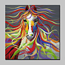cheap Abstract Paintings-Oil Painting Hand Painted - Animals Modern Canvas