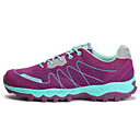 cheap Footwear & Accessories-Women's Running Shoes / Mountaineer Shoes Hiking / Running Breathable Mesh Purple / Light Grey / Dark Gray