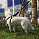 baratos Colares, Coleiras e Peitorais para Cães-Gato / Cachorro Arreios Retratável / Treinamento / Segurança Polícia / Militar couro legítimo Preto