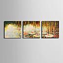 abordables Impresiones-Estampado Paisaje Floral / Botánico Modern Tres Paneles