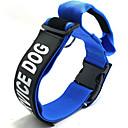 preiswerte Halsbänder, Geschirre und Leinen für Hunde-Haustierkragen Hund speziell verstellbar