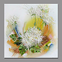preiswerte Florale/Botansiche Gemälde-Hang-Ölgemälde Handgemalte - Blumenmuster / Botanisch Moderne zeitgenössische Fügen Innenrahmen