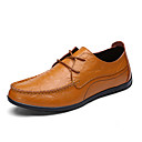 cheap Men's Slip-ons & Loafers-Men's Cowhide Summer / Fall Comfort Oxfords Walking Shoes Black / Brown