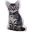 tanie Doldurulmuş ve Peluş Hayvanlar-Poduszka Zwierzątko pluszowe Kaczka Kot Psy Zwierzęta Duży rozmiar Dzieciak Unisex / Dla dziewczynek Zabawki Prezent