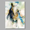 halpa Eläinmaalaukset-Hang-Painted öljymaalaus Maalattu - Eläimet Comtemporary Kangas
