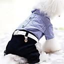 preiswerte Hundekleidung-Hund Overall Hundekleidung Streifen Rot Blau Plüsch Kostüm Für Haustiere Herrn Damen Lässig / Alltäglich