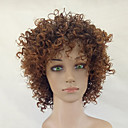 cheap Synthetic Capless Wigs-Synthetic Wig Kinky Curly Synthetic Hair African American Wig Brown Wig Women's Medium Length Capless