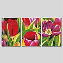 זול ציורי פרחים/צמחייה-מצויר ביד פרחוני/בוטני פנורמי אנכי, מודרני ציור שמן צבוע-Hang קישוט הבית שלושה פנלים