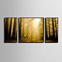 abordables Perruques de Cosplay de jeux vidéos-Toile Encadrée Set de Cadres - Paysage Animaux Plastique Illustration