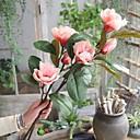 tanie Sztuczny kwiat-Sztuczne Kwiaty 1 Gałąź Rustykalny / Europejskie Orchidea Kwiaty na podłogę