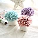 זול פרחים מלאכותיים-פרחים מלאכותיים 6 ענף כפרי / פרחי חתונה ציפורן / פרחים נצחיים פרחים לשולחן