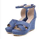 cheap Women's Sandals-Women's Shoes Denim Spring & Summer Basic Pump Sandals Wedge Heel Peep Toe Buckle White / Black / Blue / Party & Evening