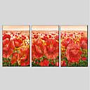 preiswerte Abstrakte Gemälde-Druck Gestreckte Leinwand - Blumenmuster / Botanisch Modern Drei Paneele