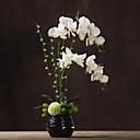 ieftine Flor Artificiales-Flori artificiale 1 ramură Clasic Pastoral Stil Orhidee Față de masă flori