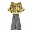 ieftine Set Îmbrăcăminte Bebeluși-Bebelus Fete Floral / Plisat Lungime Manșon 3/4 Set Îmbrăcăminte