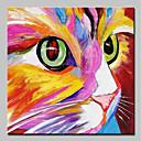 abordables Cuadros de Animales-Pintura al óleo pintada a colgar Pintada a mano - Abstracto / Pop Art Modern Incluir marco interior / Lona ajustada