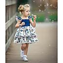 baratos Infantil Tiaras-bebê Para Meninas Activo / Moda de Rua Festa / Aniversário Azul e Branco Floral Cordões / Estampado Sem Manga Padrão Padrão Acima do Joelho Algodão / Elastano Vestido Azul 100 / Bébé