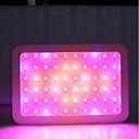 رخيصةأون أضواء تكبر  LED-1SET 600 W 6000 lm 60 الخرز LED الطيف الكامل تزايد الاضاءه لاعبا اساسيا أبيض دافئ أبيض أحمر 85-265 V تجاري المنزل / مكتب