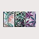 hesapli Tablolar-Boyama Haddelenmiş Kanvas Tablolar Gerdirilmiş Tuval Resimleri - Botanik Çiçek / Botanik Modern Üç Panelli Sanatsal Baskılar