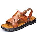 Недорогие Мужские сандалии-Муж. Комфортная обувь Кожа Лето / Осень Классика / На каждый день Сандалии Дышащий Коричневый
