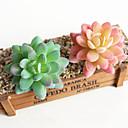 זול פרחים מלאכותיים-פרחים מלאכותיים 1 הסניף פרח האבן קלאסי מודרני עכשווי כפרי צמחים עסיסיים פרח השולחן