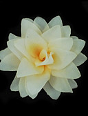 hesapli Parti Başlıkları-Kumaş  -  Çiçekler 1 Düğün / Özel Anlar / Dış mekan Başlık
