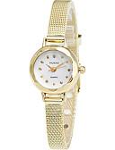 hesapli Moda Saatler-Kadın's Bilek Saati imitasyon Pırlanta / Havalı Alaşım Bant Günlük / Zarif / Moda Gümüş / Altın Rengi