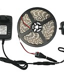 baratos Vestidos de Patinação no Gelo-5m 300 LEDs 5050 SMD Branco Quente / Branco 12 V / IP44
