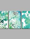 halpa Hääbolerot-Pingoitetut kanvasprintit Moderni, 3 paneeli Kangas Vaakatasoinen panoraama Painettu Wall Decor Kodinsisustus