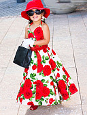 povoljno Haljine za djevojčice-Dijete koje je tek prohodalo Djevojčice Rođendan Dnevno Cvjetni print Bez rukávů Haljina Red / Pamuk / Slatko / Princeza