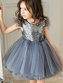 זול שמלות לתינוקות-שמלה מעל הברך שרוולים קצרים רשת אחיד חגים וינטאג' / פעיל בנות תִינוֹק / פעוטות