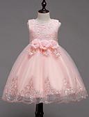 Χαμηλού Κόστους Φορέματα για κορίτσια-Παιδιά Κοριτσίστικα Γλυκός Πάρτι / Καθημερινά Φλοράλ / Patchwork Δίχτυ / Patchwork Αμάνικο Ρεϊγιόν / Πολυεστέρας Φόρεμα Ανθισμένο Ροζ