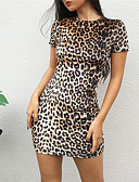 cheap Work Dresses-Women's Party / Birthday Sheath Dress - Leopard Print Spring Brown S M L