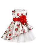 Χαμηλού Κόστους Φορέματα για κορίτσια-Νήπιο Κοριτσίστικα χαριτωμένο στυλ / Κομψό στυλ street Καθημερινά / Εξόδου Φλοράλ Με Κορδόνια Αμάνικο Πάνω από το Γόνατο Βαμβάκι / Spandex Φόρεμα Λευκό
