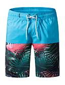 זול בגדי ים לגברים-כחול בהיר XXXXL XXXXXL XXXXXXL גיאומטרי, בגדי ים חלקים תחתונים מכנסי שחייה כחול בהיר כחול ים מידות גדולות בגדי ריקוד גברים