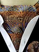 Недорогие Мужские брюки и шорты-Муж. Классический Платок / аскотский галстук Цветочный принт