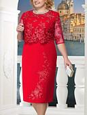 זול שמלות מודפסות-מידי תחרה, אחיד - שמלה נדן תחרה מידות גדולות אלגנטית Party בגדי ריקוד נשים