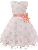 povoljno Haljine za djevojčice-Djeca Dijete koje je tek prohodalo Djevojčice Osnovni slatko Dusty Rose Cvjetni print Mašna Bez rukávů Do koljena Haljina Blushing Pink / Pamuk