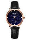 זול שעונים-בגדי ריקוד נשים שעון מכני קווארץ עמיד במים אנלוגי אופנתי - אדום כחול ורוד / מתכת אל חלד
