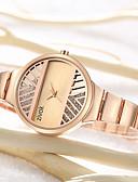 זול שעונים-בגדי ריקוד נשים שעון מכני קווארץ עמיד במים אנלוגי יום יומי - זהב כסף זהב ורד / מתכת אל חלד