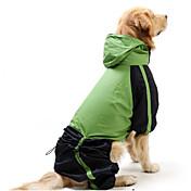 Gato Perro Impermeable Ropa para Perro A Prueba de Agua Paravientos: Bloques Rojo Verde